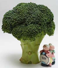 Broccoli diabetic diets